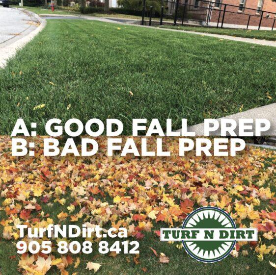 Good Fall Prep vs. Bad Fall Prep