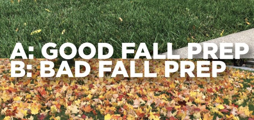 Good Fall Prep vs. Bad Fall Prep